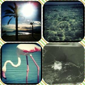 Caribbean Love 2013