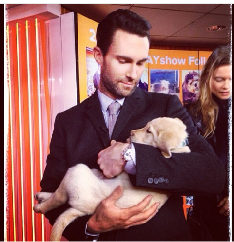 Adam and a puppy with Behati at Today show